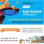 New IIBA certification